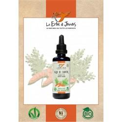 Масло моркови Virgin Carrot Oil 50 мл сертифицированное органическое