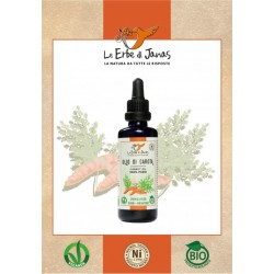 Virgin Oil of Carrot 50 ml certified Bio